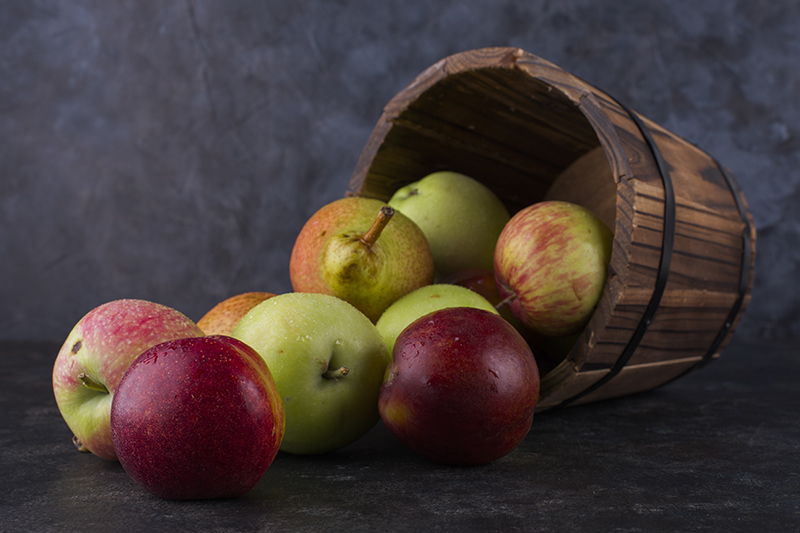 almafajták